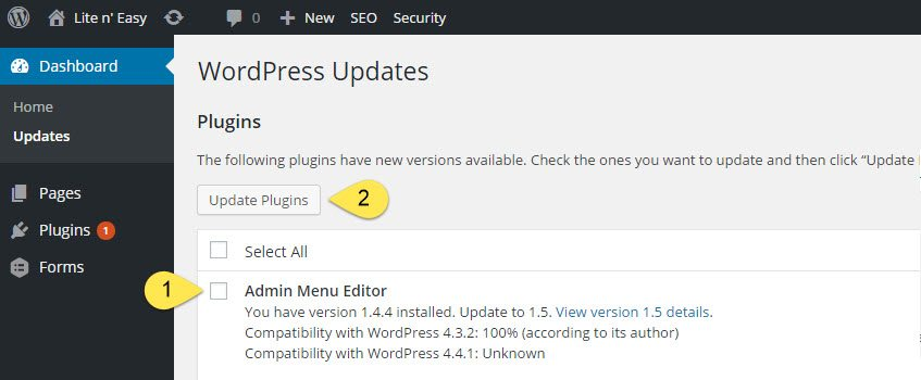 WordPress Plugin Update 2