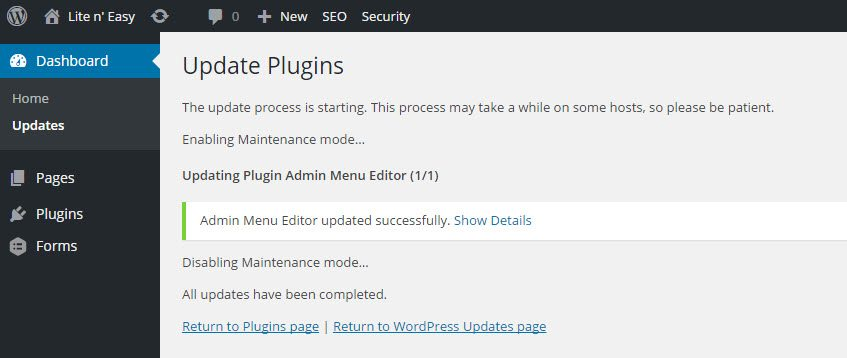 WordPress Plugin Update 3