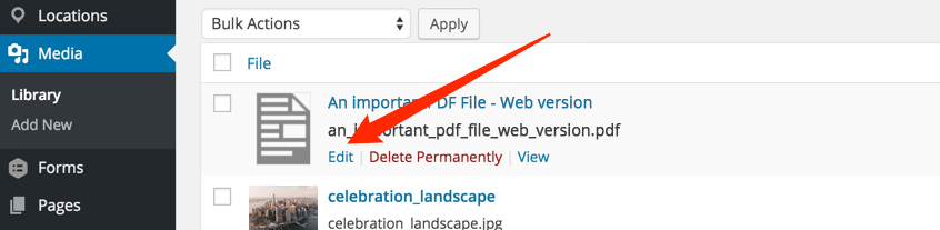 Link File on WordPress